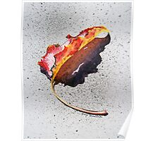 Leaf On Fire Poster