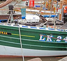 LK243 Swan by Woodie