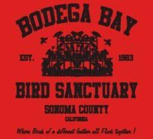 BODEGA BAY BIRD SANCTUARY Kids Clothes