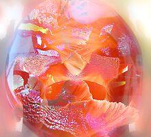 Glassy petals by Olga