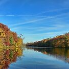 Autumn Panorama  by Lanis Rossi