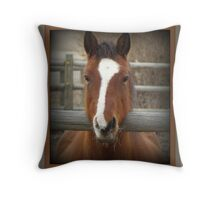 Sweet Tawny's Whiskers Throw Pillow