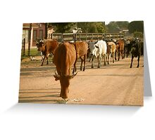 Life on the Road Greeting Card