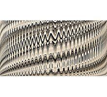 Woven Fields II Photographic Print