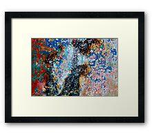The Fine Art of Peelin' Paint Framed Print