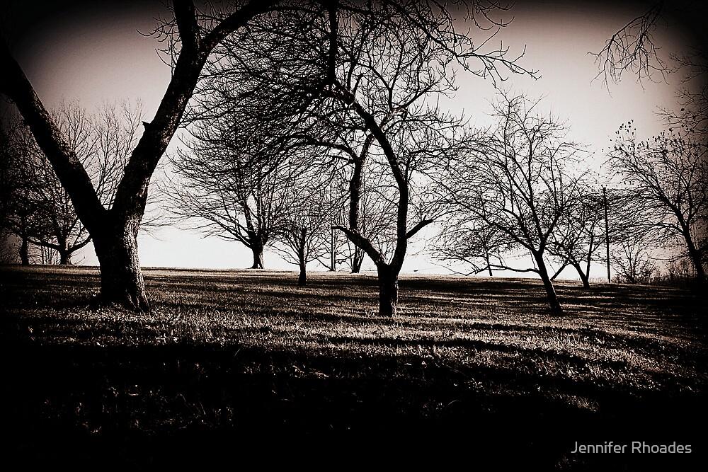 Stark Twilight by Jennifer Rhoades