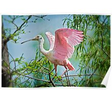 Just love those pink wings . . . Poster