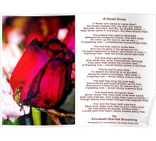 A Dead Rose with a Poem by Elizabeth Barrett Browning Poster