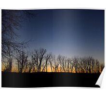 Sunset Treeline Poster