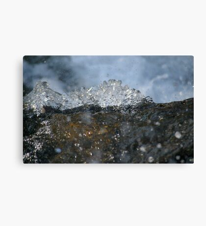 Dance of the Dragon Canvas Print