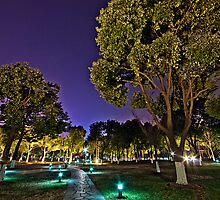 Nighttime in the park by Douglas M. Paine