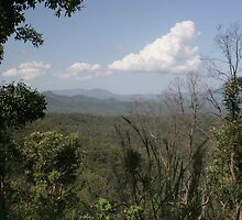 View Looking in a Northerly Direction from Wallaman Falls by STHogan