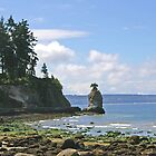 Stanley Park Seawall 2 by Tom  Reynen