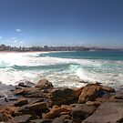 270 Degrees of Manly by Paul Duckett