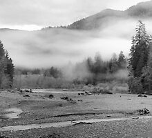 Black and White Hoh River at Dusk by North22Gallery