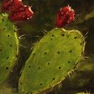 Nopal y Tuna by E.E. Jacks