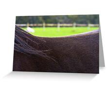 Saddle Landscape II Greeting Card