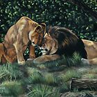Lions by ascenciok