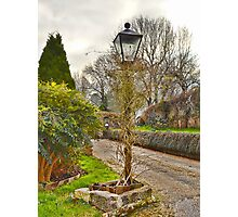 A Garden Lamp Photographic Print
