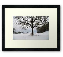 winter scene 3 Framed Print