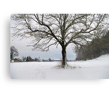 winter scene 3 Metal Print