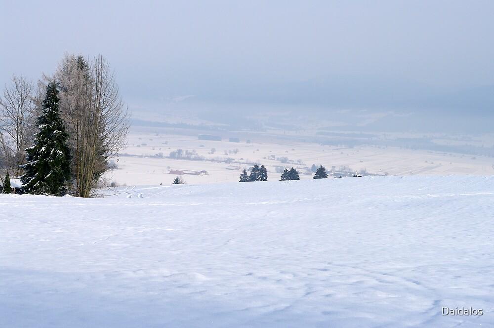 winter scene 7 by Daidalos