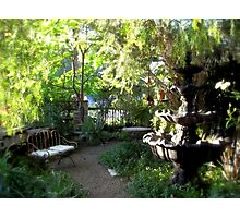 Sunlight In The Garden - Hidden Chateau Photographic Print