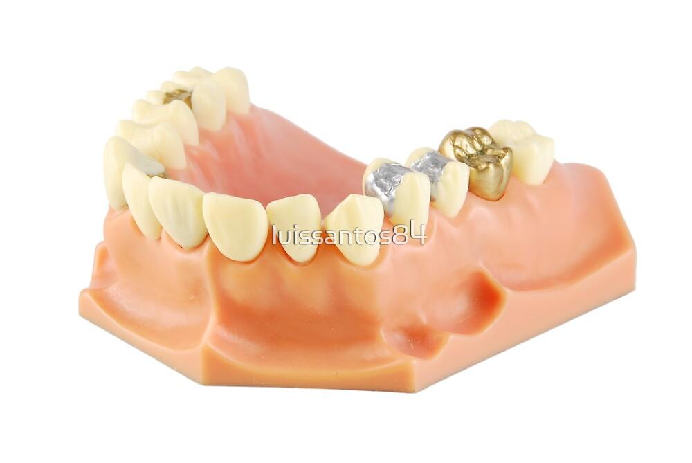 Dental model  by luissantos84
