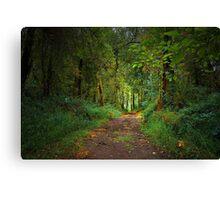 Dream Walk Canvas Print