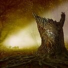 Norse Spirit