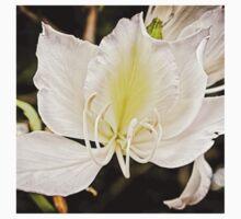 Beautiful butterfly tree One Piece - Short Sleeve