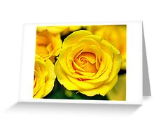 Outstanding Rose - Textured Greeting Card