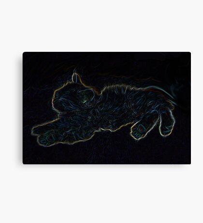 Colourful Kitten Canvas Print