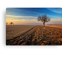 ~Farmtree~ Canvas Print