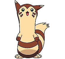 furret  Photographic Print