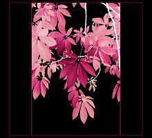 Pink Leaves on Black Background by AlysonArtShop