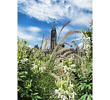 Decorative Fountain Grass & White Flowers in front of the Peace Tower, Parliament Hill, Ottawa, Canada Photographic Print