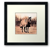 Polly Framed Print