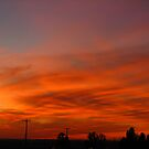 Musky Red Sunset (best viewed larger please) by Brenda Dahl