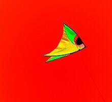 The Kite ! by Elfriede Fulda