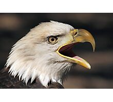 Screaming Eagle 2 Photographic Print