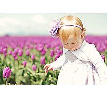 Endless Tulips Photographic Print