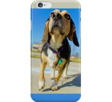 Sunny Day Beagle iPhone Case/Skin