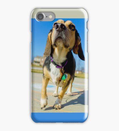 Sunny Day Beagle iPhone Case/Skin