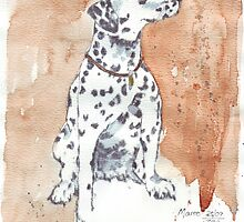 Only one Dalmation by Maree Clarkson