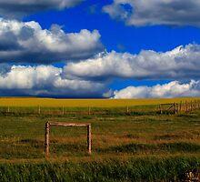 Prairie Vista by Larry Trupp