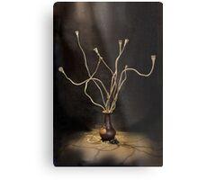 Still life with dried poppy stems.Insidiousness. Metal Print