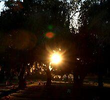 Sundown with host of angels watching by ♥⊱ B. Randi Bailey