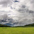 Goldsborough Valley, Gordonvale, Cairns FNQ by Chris Cohen