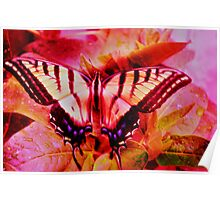 Psychedelic Swallowtail Butterfly Poster